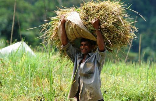 Farmer's health- The conscience call for action